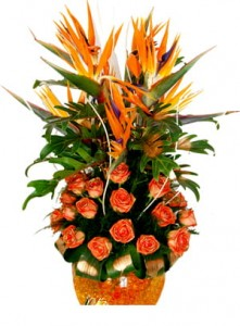 Birds of Paradise and Orange Roses arrangement.