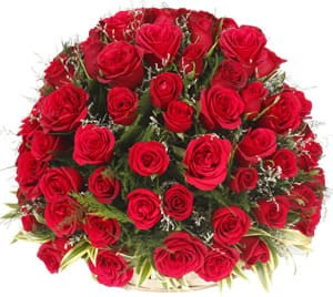 A century of Red roses in a basket.