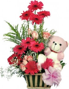 Arrangement of Pink Gerberas, Roses with Star of bethlehem, and matching Teddy .