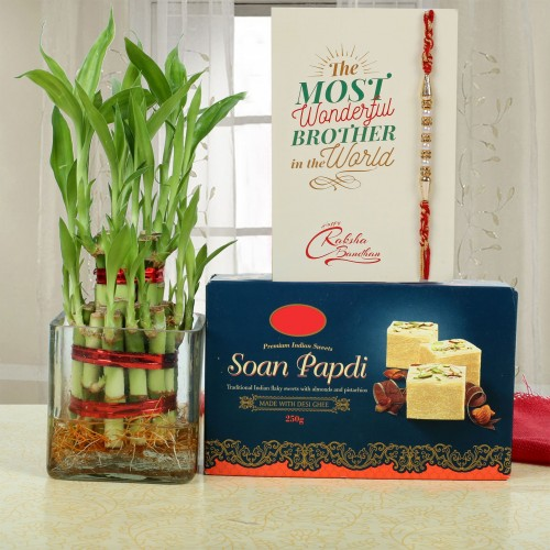 0013721_lucky-bamboo-and-soan-papdi-for-rakhi.jpeg