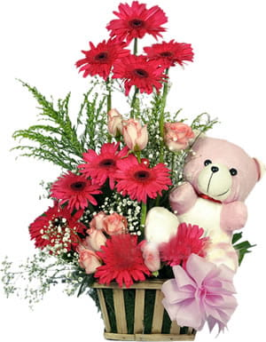 Arrangement of Pink Gerberas, Roses with Star of bethlehem, and matching Teddy for the most beautiful baby in the world.800.jpg