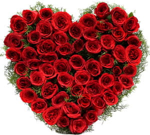 A lovely heart shaped arrangement of 60 red roses for your sweetheart, to make her say wow.1500.jpg