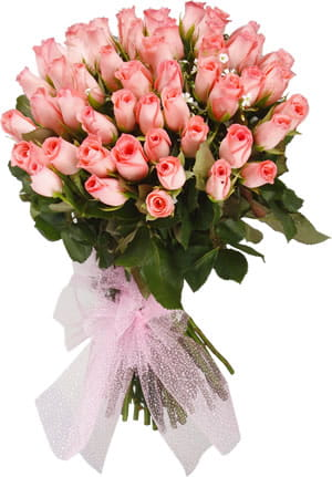 Bunch of 50 pink roses to make the special one say my love .1200.jpg